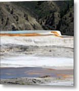 Canary Spring At Mammoth Hot Springs Upper Terraces Metal Print