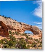 Canyon Badlands And Colorado Rockies Lanadscape Metal Print