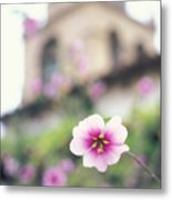 Carmel Mission With Flowers Metal Print