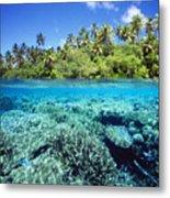 Caroline Islands, Pohnpei Metal Print