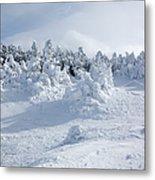 Carter Dome - White Mountains New Hampshire Usa Metal Print
