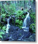 Cascade Creek And Ferns  Metal Print