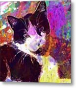 Cat Feline Pet Animal Cute  Metal Print