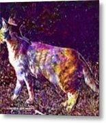 Cat Kitten Breed Cat Mackerel  Metal Print