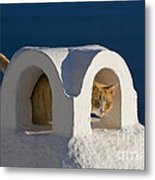 Cat On A Roof, Greece Metal Print