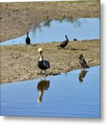 Center Of Attraction Metal Print