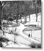 Central Park 6 Metal Print by Wayne Gill