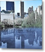 Central Park In New York City Metal Print