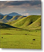 Central Valley California Metal Print