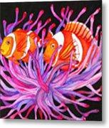 Clownfish And Sea Anenome  Metal Print
