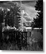 Cocolala Creek Slough Metal Print