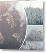 Collage Of Winter Time In Poland. Metal Print