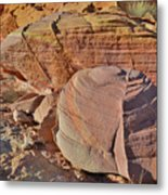 Colorful Valley Of Fire State Park Metal Print