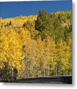 Colors Of Colorado #2 Metal Print