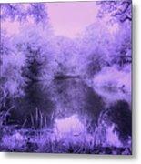 Conishead Lake Metal Print