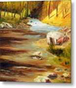 Cool Mountain Stream Metal Print