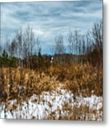 Country Winter 3 Metal Print