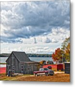 Cranberry Farming Metal Print by Gina Cormier