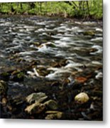 Creek, Smoky Mountains, Tennessee Metal Print