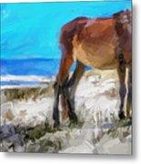 Cumberland Pony Metal Print