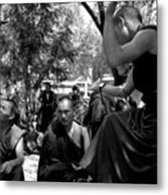 Debate With Lama Metal Print
