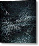 Deep In Woods Metal Print