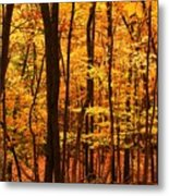 Delicious Autumn Metal Print