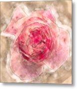 Digitally Manipulated Pink English Rose  Metal Print