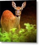 Doe Eyes Metal Print