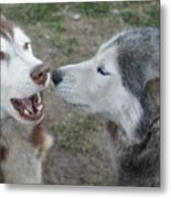 Dog Breath Metal Print