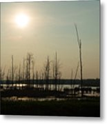 Dusk In The Wetlands Metal Print