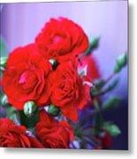 Early Morning Roses Metal Print