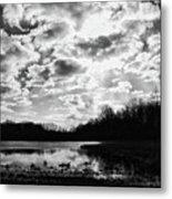 Earth And Sky Metal Print