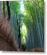 Earth Moments Gallery I Metal Print