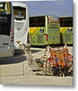 Egyptian Parking Lot Metal Print
