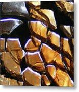 Element Earth Metal Print