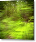 Enchanted Forest 4 Metal Print