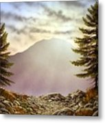 Evening Trail Metal Print