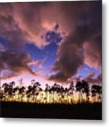 Everglades Sunset Metal Print