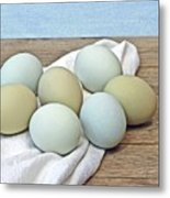 Exotic Colored Chicken Eggs Metal Print