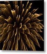 Explosive Flowers 1 Metal Print