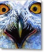 Eyes Of Owls No. 15 Metal Print