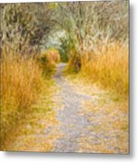 Fall Pathway 3 Metal Print
