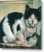 Farm Cat Metal Print
