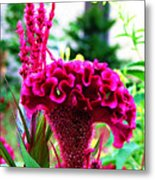 Field Flowers And Critters Metal Print