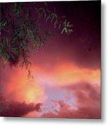 Film Noir Debra Winger Theresa Russell Lois Smith Black Widow 1987 Sunset Casa Grande Arizona 2005 Metal Print