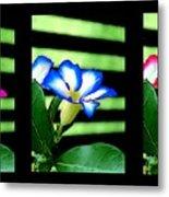 Floral Triptych Metal Print