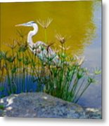 Florida Heron Metal Print