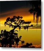 Central Florida Sunset Metal Print