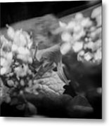 flowers in Motion Metal Print